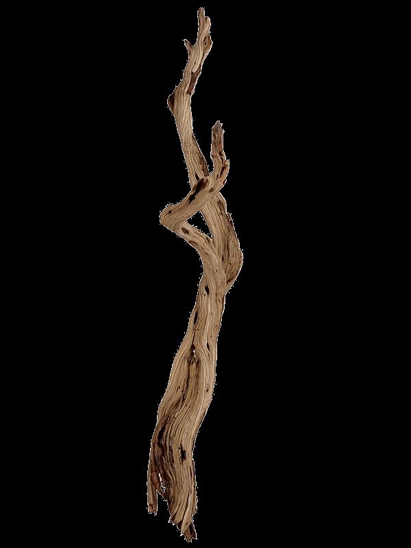 Decowood Ghostwood sandblasted - Main image