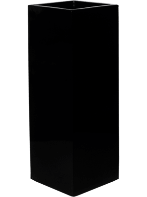 Fiberstone Glossy black yang  - Bac