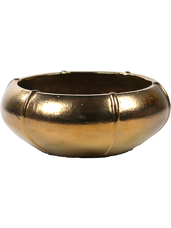 ter steege Moda Bowl Gold 55 - Bac - Main image