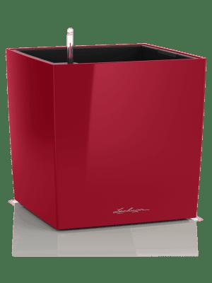 Lechuza Cube Premium