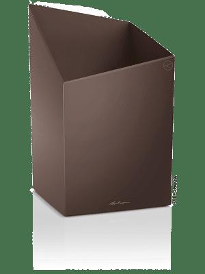 Lechuza Cursivo Premium