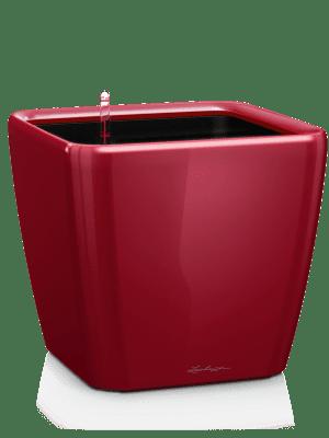 Lechuza Quadro LS All inclusive set scarlet red  - Plantenbak