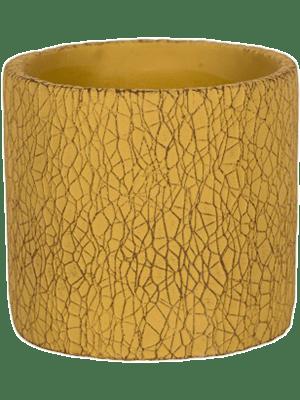 Leon Yellow 17 - Plantenbak