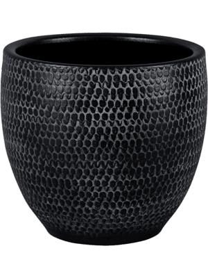 Merida Black 24 - Pflanzgefasse