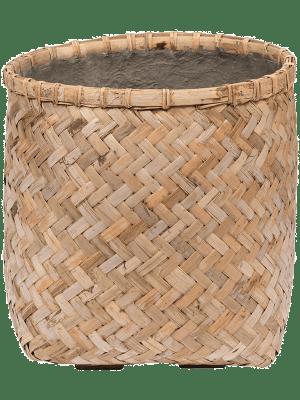Bohemian Zayn Bamboo XXS 37 - Bac