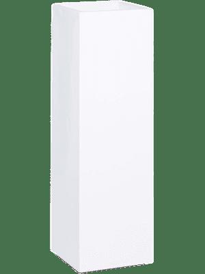 Premium Tower
