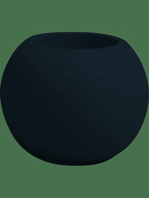Premium Globe
