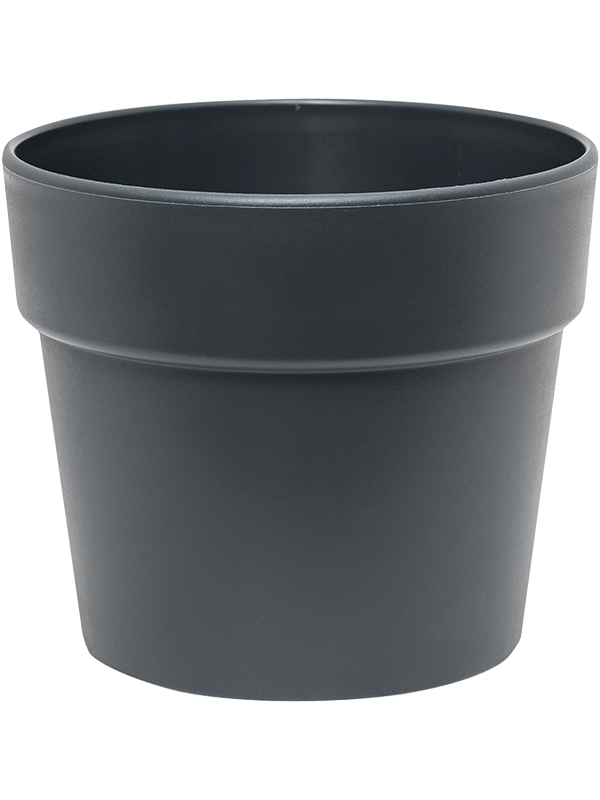 ter steege Indoor Pottery Classic Pot synthetic 16/14 cm anthracitgrey mat (13/12) 16 - Planter - Main image