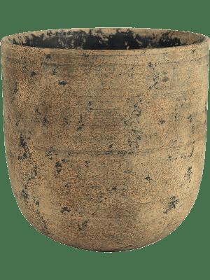 Dian Pot Camel 18 - Bac