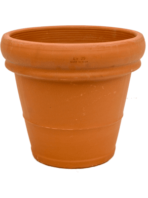 Terra Cotta Doppio bordo 35 - Planter