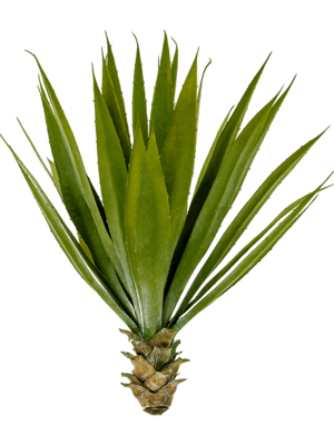 Agave Tuft - Artificial