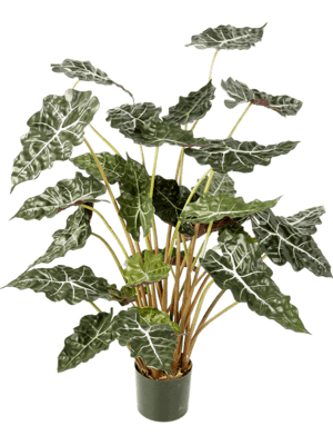 Alocasia Tuft - Artificial