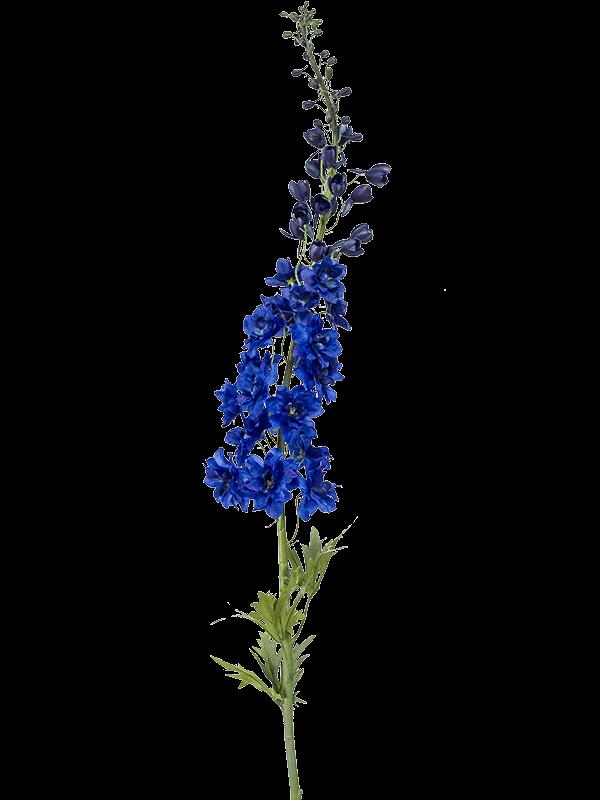 Delphinium Branch Blue - Artificial - Main image