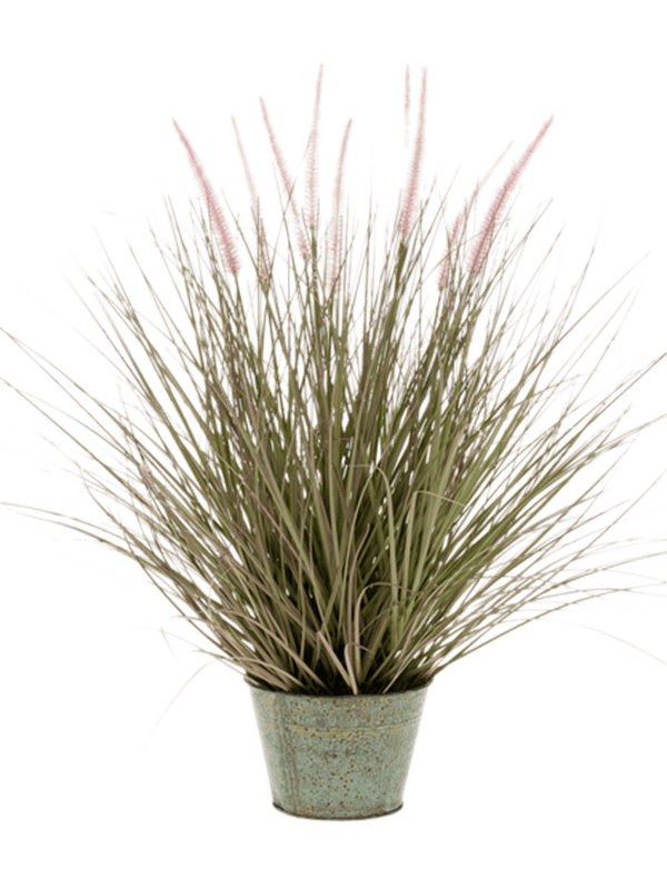 Grass Pennisetum In zinc pot - Artificial - Main image
