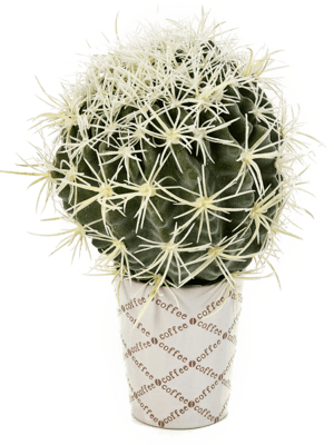 Cactus Bol - Artificial