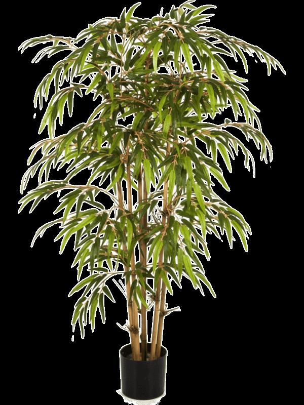 Bamboo Tree - Artificial - Main image
