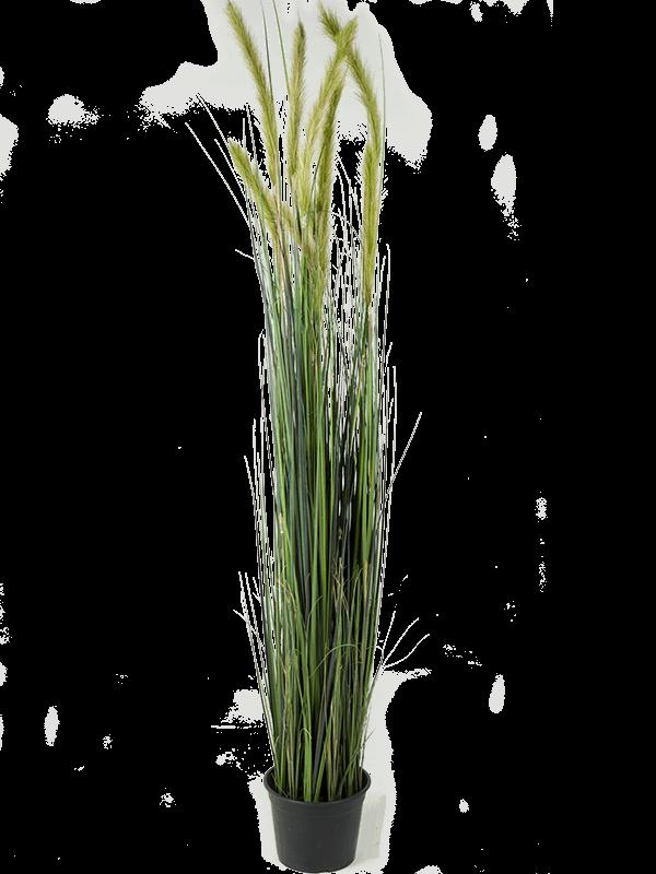 Grass foxtail Bush - Artificial - Main image