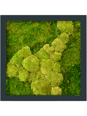 Moss painting