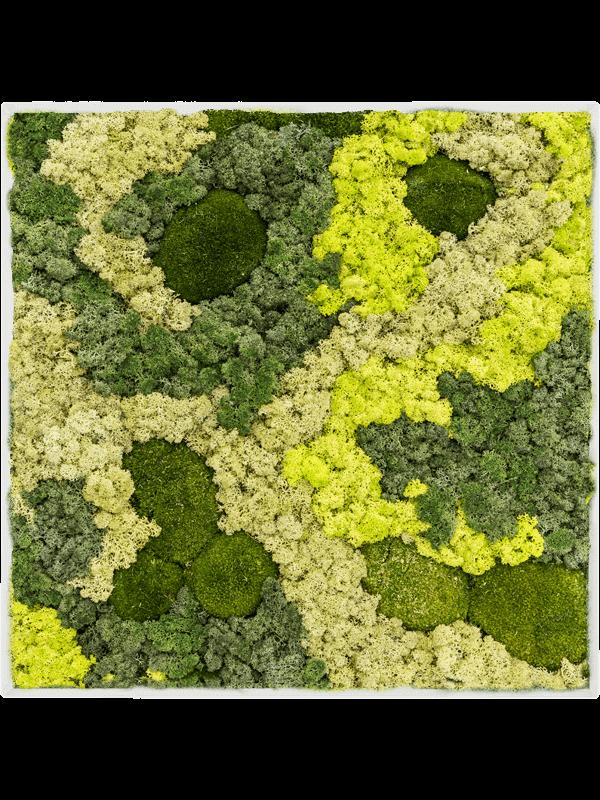 Tableau de mousse Stiel L RAL 9010 Mat 30% Mousse boule 70% Lichen Mix - Mos - Main image